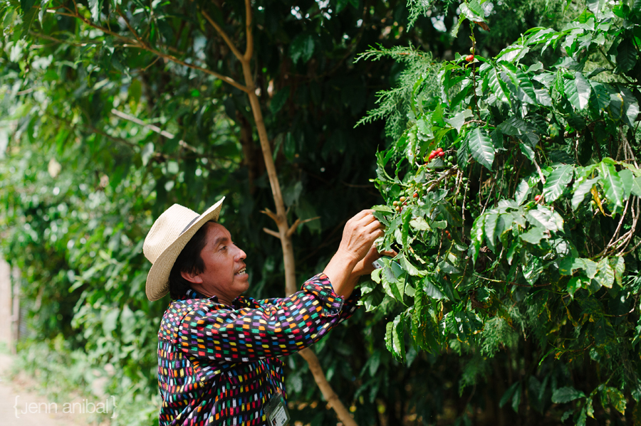 Guatemala-Travel-Photography-30